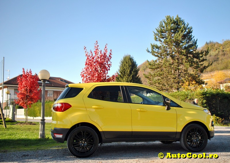 Ford Eco Sport 061