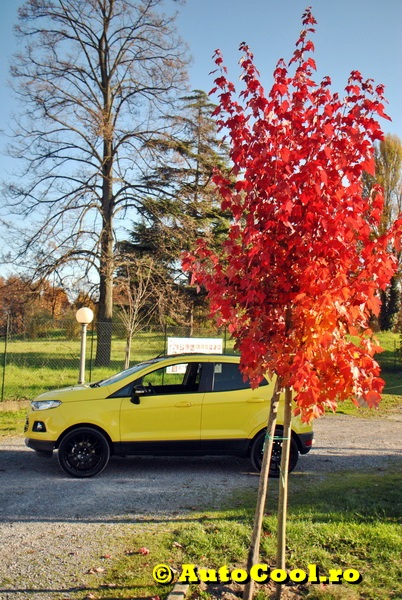 Ford Eco Sport 069