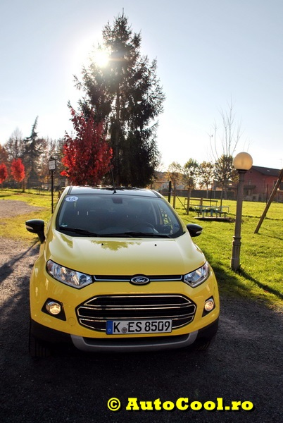 Ford Eco Sport 084